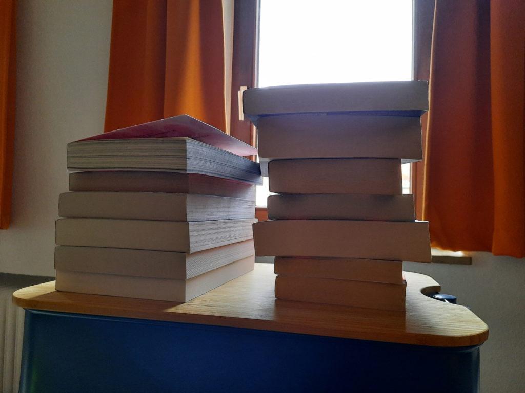Zwei Stapel mit insgesamt dreizehn Büchern, von denen man nur den Buchschnitt sieht, vor einem Fenster