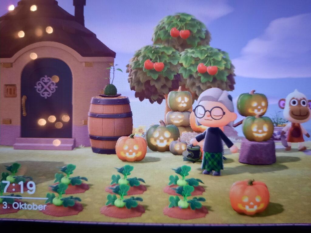 Animal-Crossing-Screenshot, bei dem mein Charakter mit einer Gießkanne in der Hand vor einem Beet mit Kürbispflanzen steht. Im Hintergrund kann man diverse geschnitzte Kürbisse sehen, die zum Teil aufeinandergestapelt, auf einen Steinhocker oder auf dem Boden platziert sind.